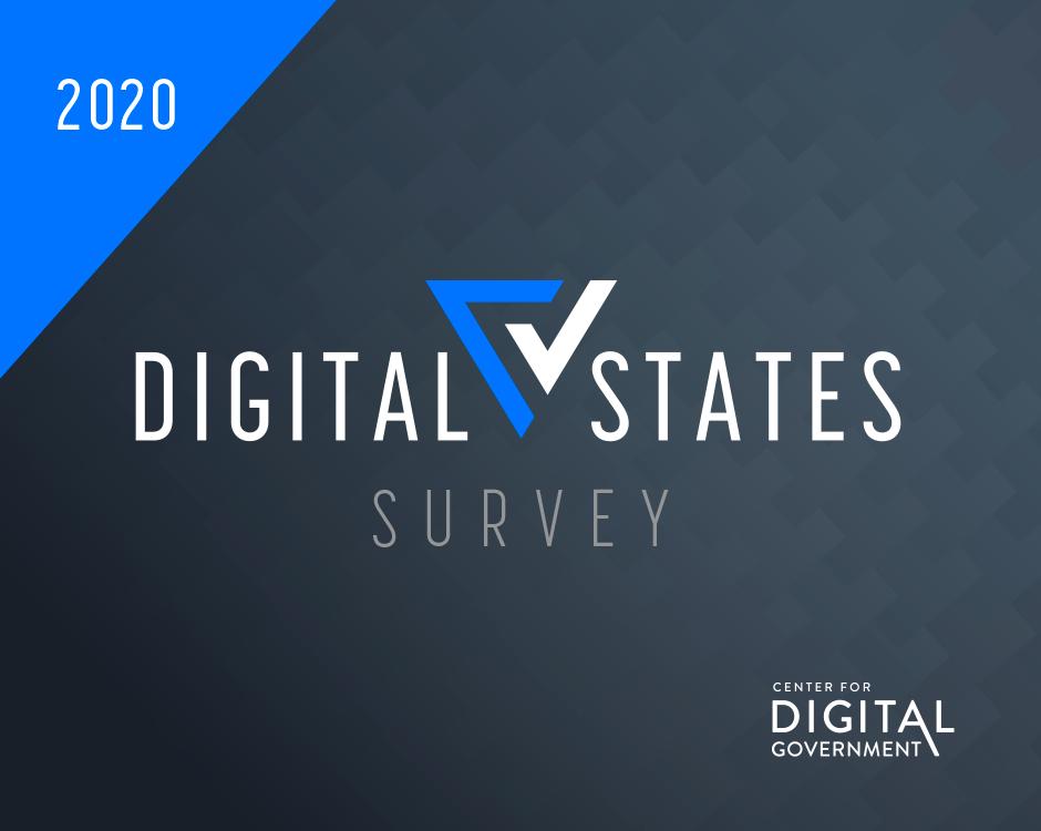 Digital States Survey Logo